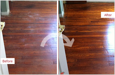 Sir Grout Seattle Deep Wood Cleaning